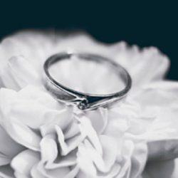 Alianzas de boda de oro blanco